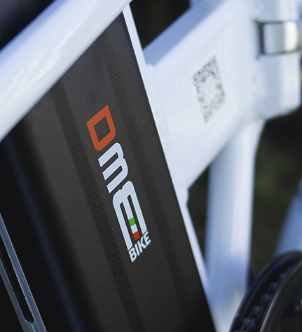 biciclette pedalata assistita