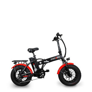 "fat bike 16"""
