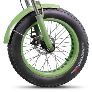 chaoyang-dino-skin-copertone-dme-bike